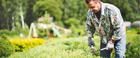 Man tending to garden